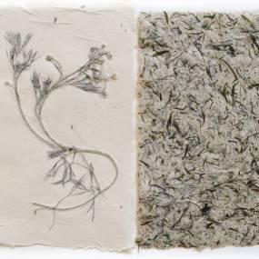May Babcock, Creative Papermaking