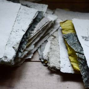 May Babcock, Papermaking with Plants